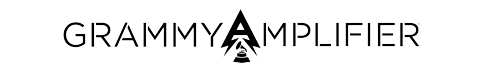 2f9.Amplifier_LOGO_2015_noHyundai_BlackH