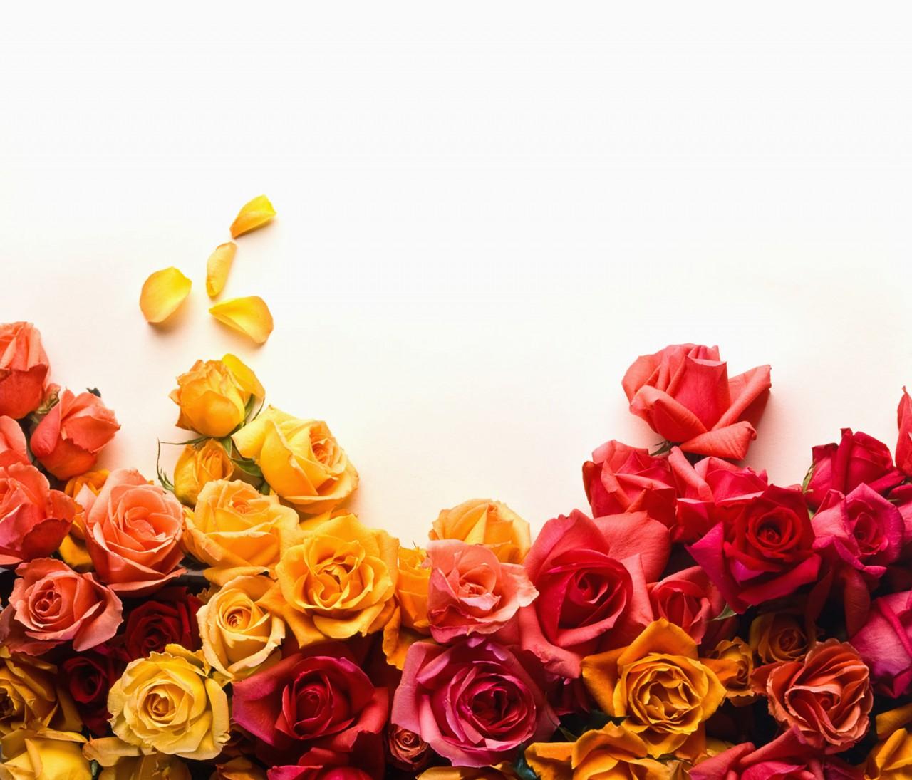 Фото поздравления цветы
