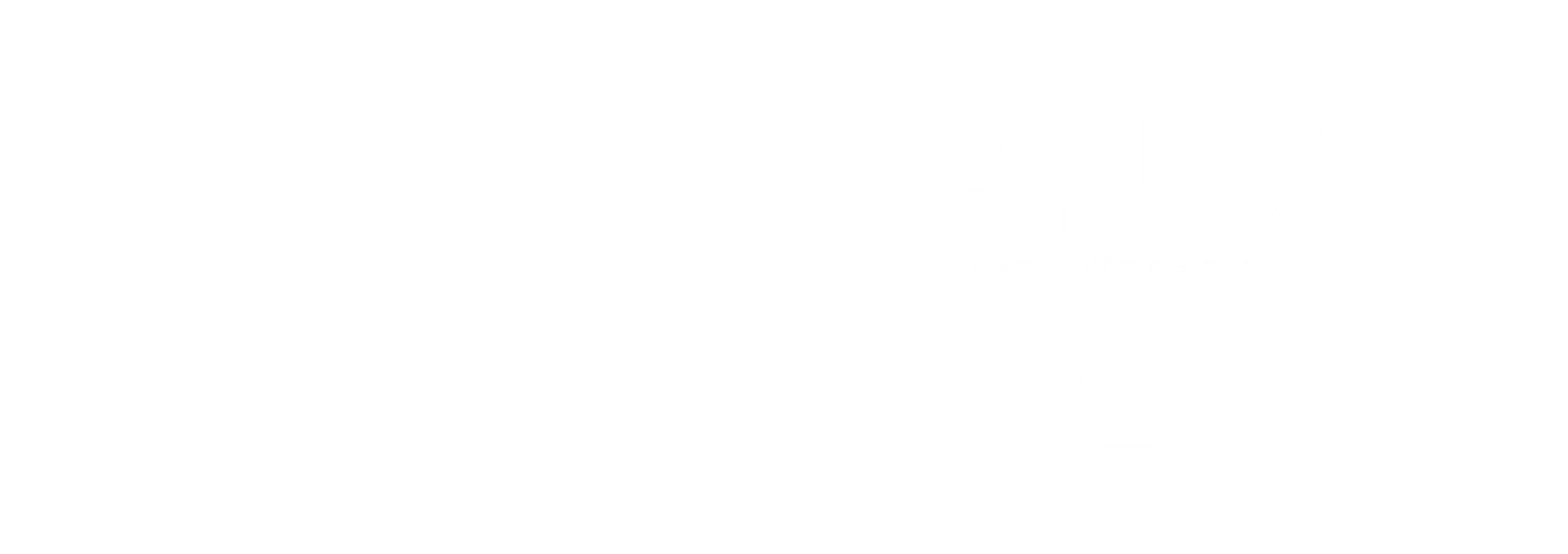 Lyft and Valley Driving school